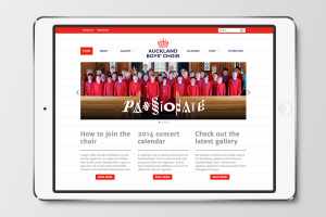 Auckland Boys' Choir website designed by Angle Limited