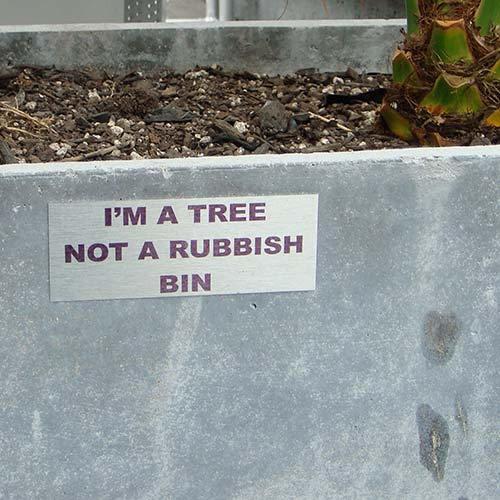 I am a tree sign in Auckland CBD photographed by Angle Limited